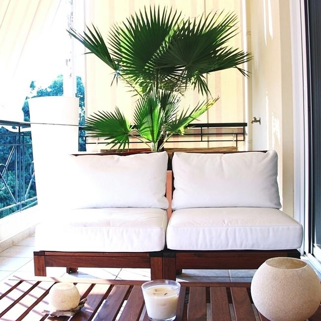 Jelena Zivanovic Instagram @lelazivanovic.Glam fab week.Palm tree for balcony.Ikea balcony furniture.
