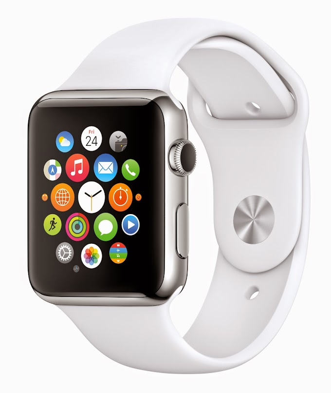 Apple Watch Accessibility: Possibilities, Challenges, and Unknowns
