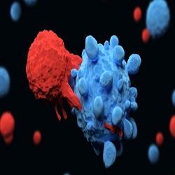 Nobel de Medicina vai para pesquisa que revoluciona tratamento do câncer