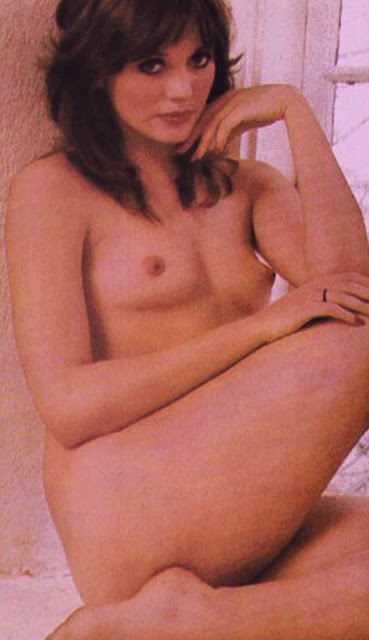 Lesley anne down fake nude — pic 3
