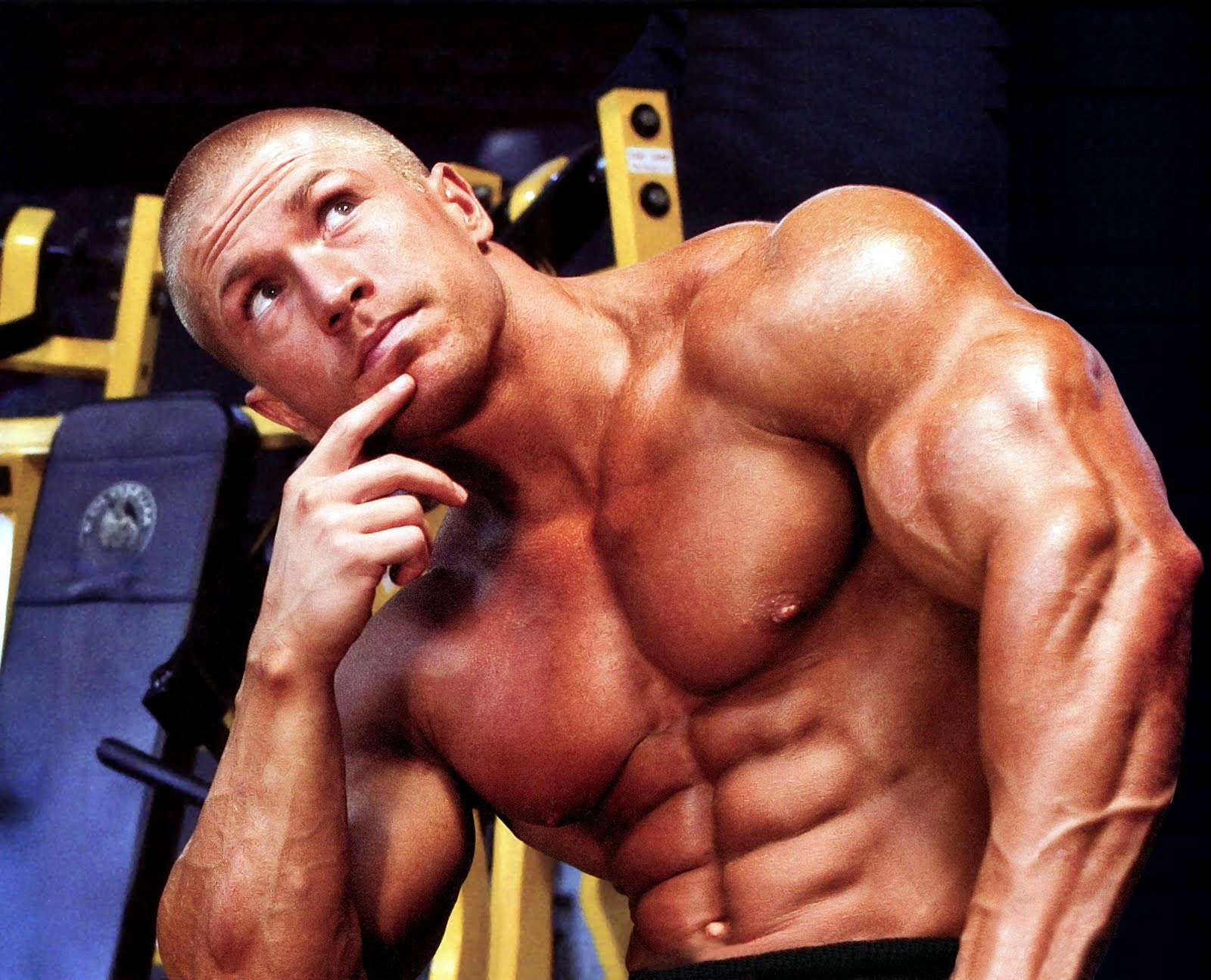 Bodybuilding steroids secrets: March 2015
