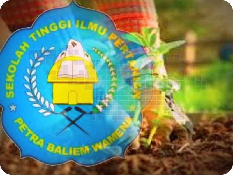 Mahasiswa Sekolah Tinggi Ilmu Pertanian Stiper Petra Baliem