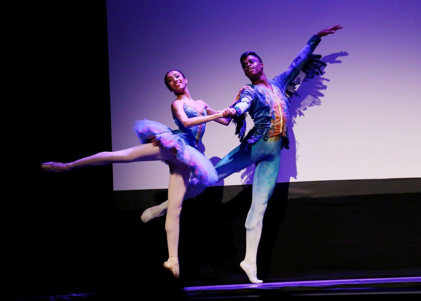 A Ballerinas Tale