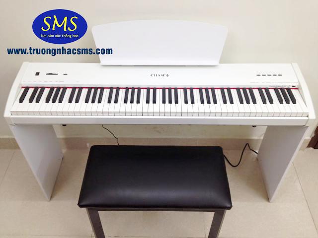 Piano điện Chase P-55 màu trắng