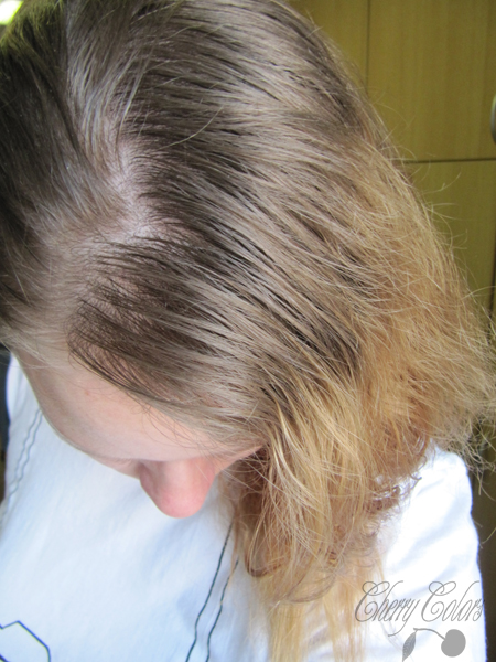 hair roots before dyeing