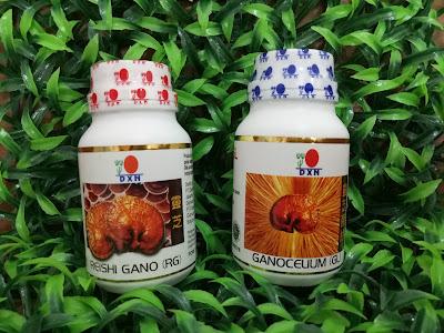 Agen RG-GL DXN,RG-GL DXN herbal,produk Ganoderma