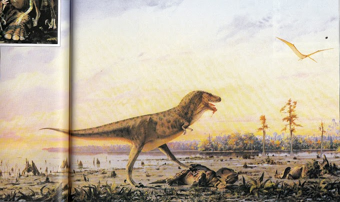 Vintage Dinosaur Art: Dinosaurs - Living Monsters of the Past (Part 2)