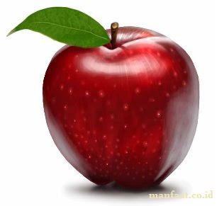 Khasiat Buah Apel Untuk Pengobatan Herbal Tubuh