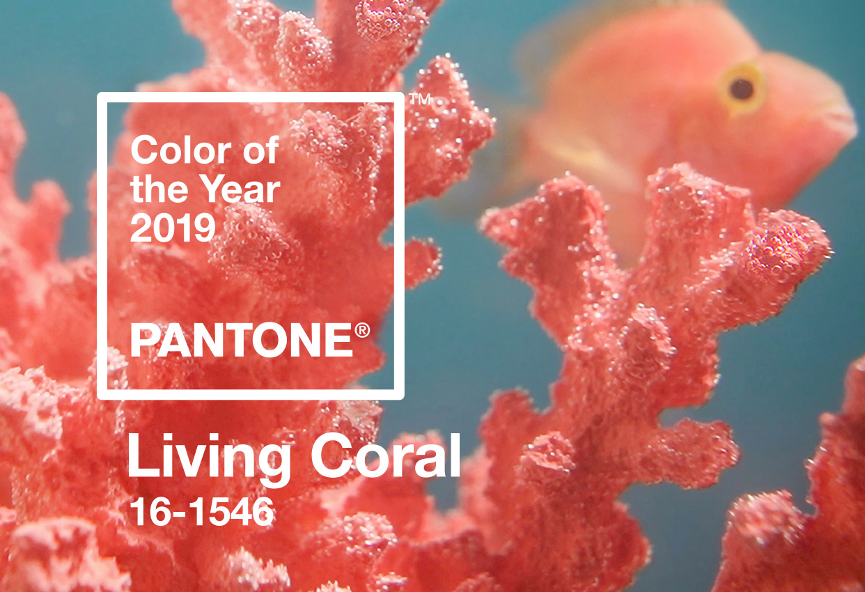 Color del Año 2019 Pantone, Living Coral