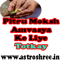 totke for sarwapitra amavasya