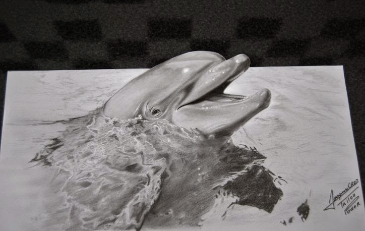 Optical illusion dolphins