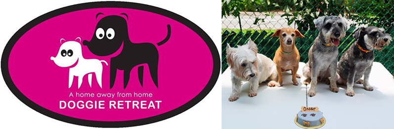 Dog boarding services in Singapore