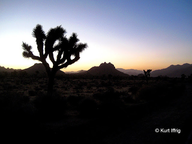 Early morning landscape in northwestern Joshua Tree. Some days they are spectacular.