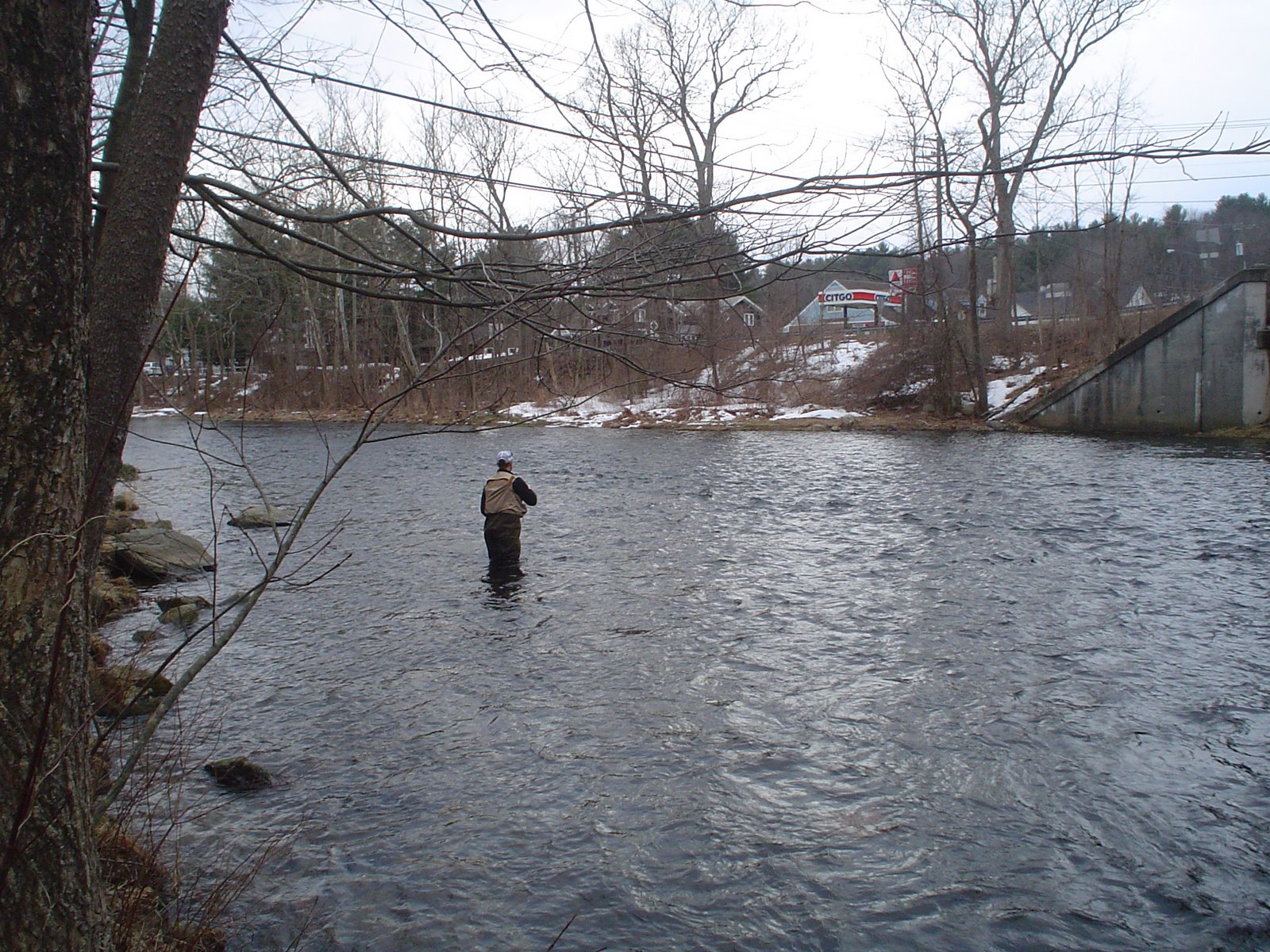Millers swift ware and eb fly fishing forum welcome to for Farmington river fishing