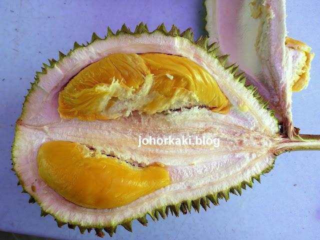 Durian-Stall-Johor-Bahru-新山住家卖榴莲
