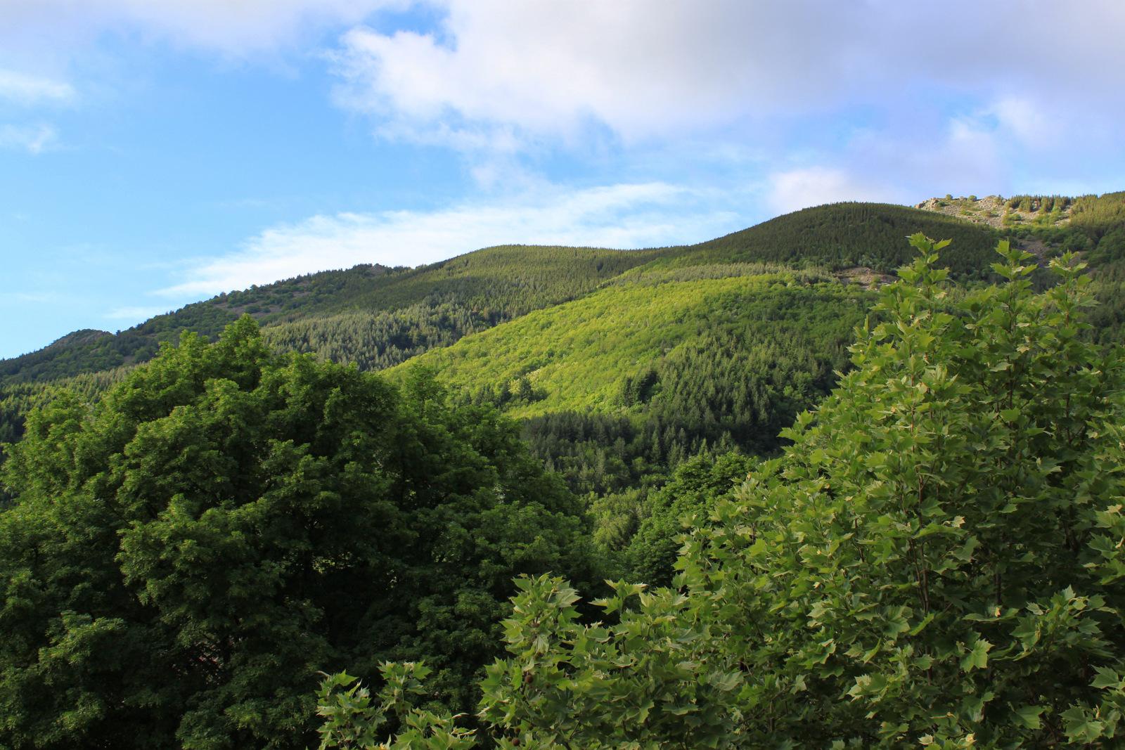 Ardèche - Le Tanargue