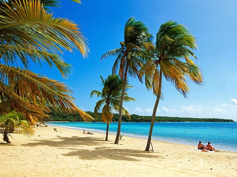 Explore The Beauty Of Caribbean: World's Most Beautiful Islands