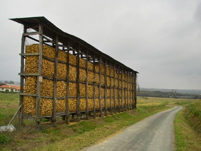 Stockage des grains - Cribs