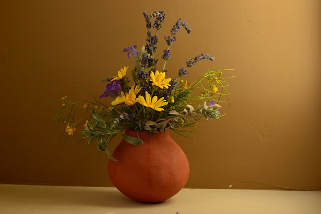 desert garden, small sunny garden, amy myers, photography, monday vase