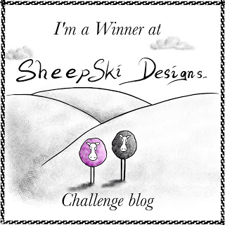 I won at Sheepski Designs