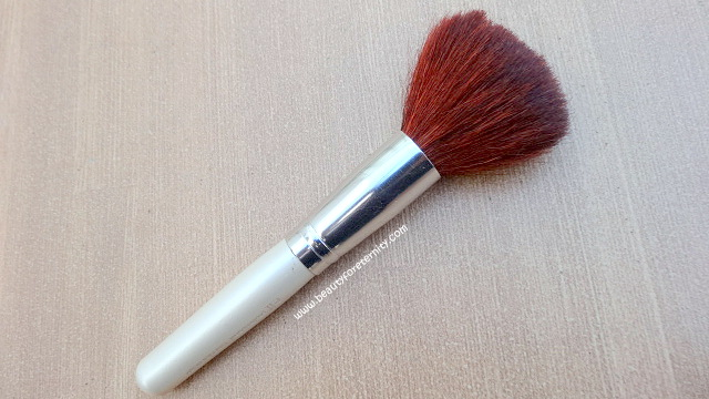 finest selection 30275 e3720 ELF Total Face Brush Review , Pictures and Price