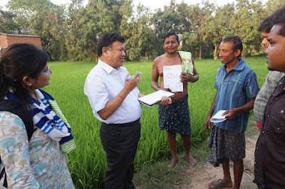 Millions of Odisha rice farmers to receive customized fertilizer recommendation at their doorsteps