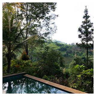 kolam renang villa maria dago village bandung