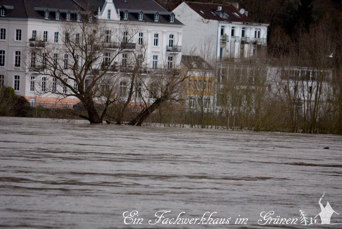 Rolandseck, Hochwasser, Nonnenwerth