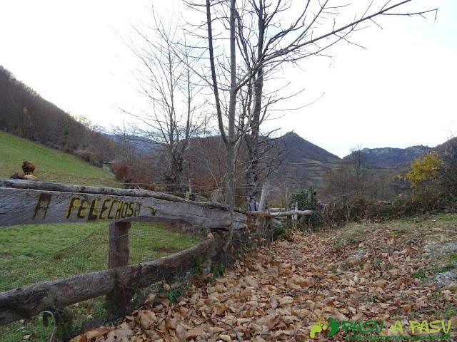 Ruta a Felechosa desde el Alto Vallina