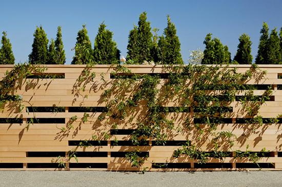 desain pagar minimalis dengan tanaman