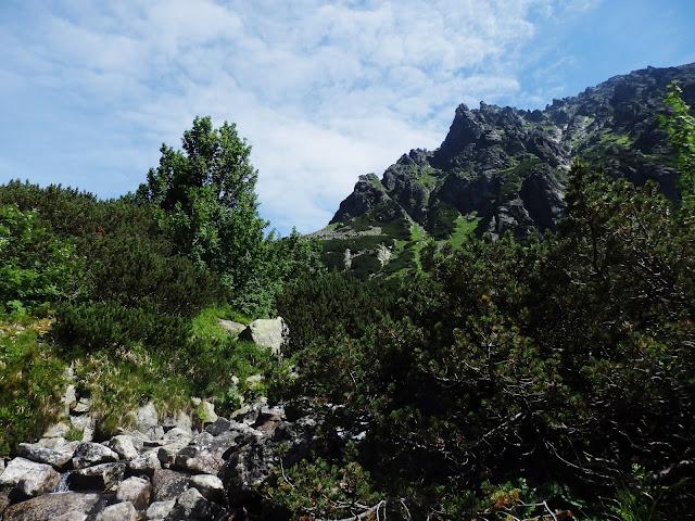 Szlak na Rysy, okolice Razcestia nad Zabim potokom