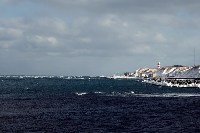 遠くに宗谷岬のモニュメントが見える