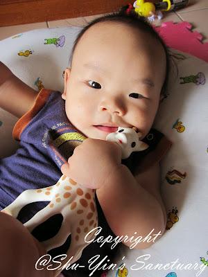 Shu Yin S Sanctuary Review Amp Giveaway Sophie The Giraffe