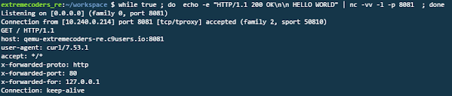 Netcat server replied to the request