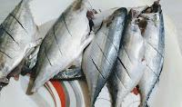 Incision marked bangda Mackerel fish for tawa fry Recipe