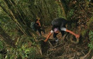 Jalur pendakian gunung Cikuray melalui Bayongbong