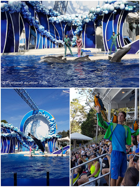 Florida - Orlando - Sea World {EamK on Tour}