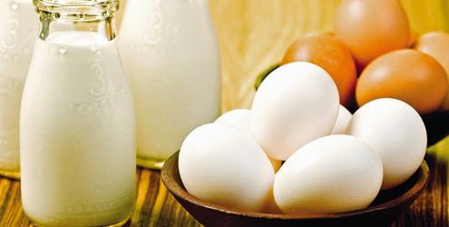fonte de vitamina B12 ovos e leite
