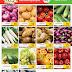 عروض سند المدينة الاماراتSanad Al Madina Supermarket Offers حتى 2 أبريل