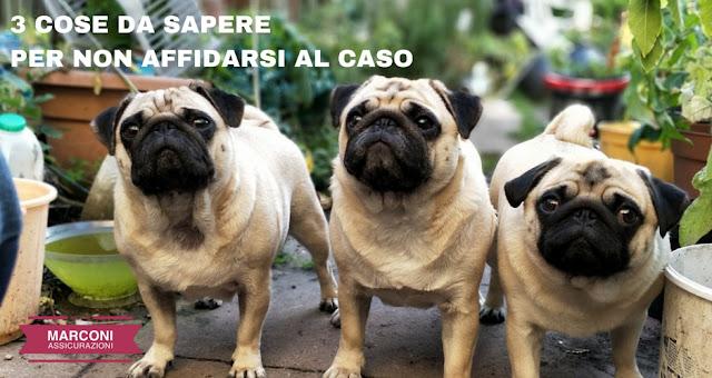 3 COSE DA SAPERE PER NON AFFIDARSI AL CASO