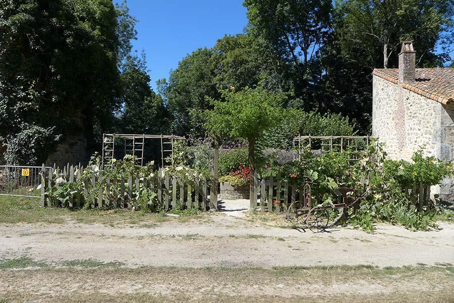 jardin potager mignon