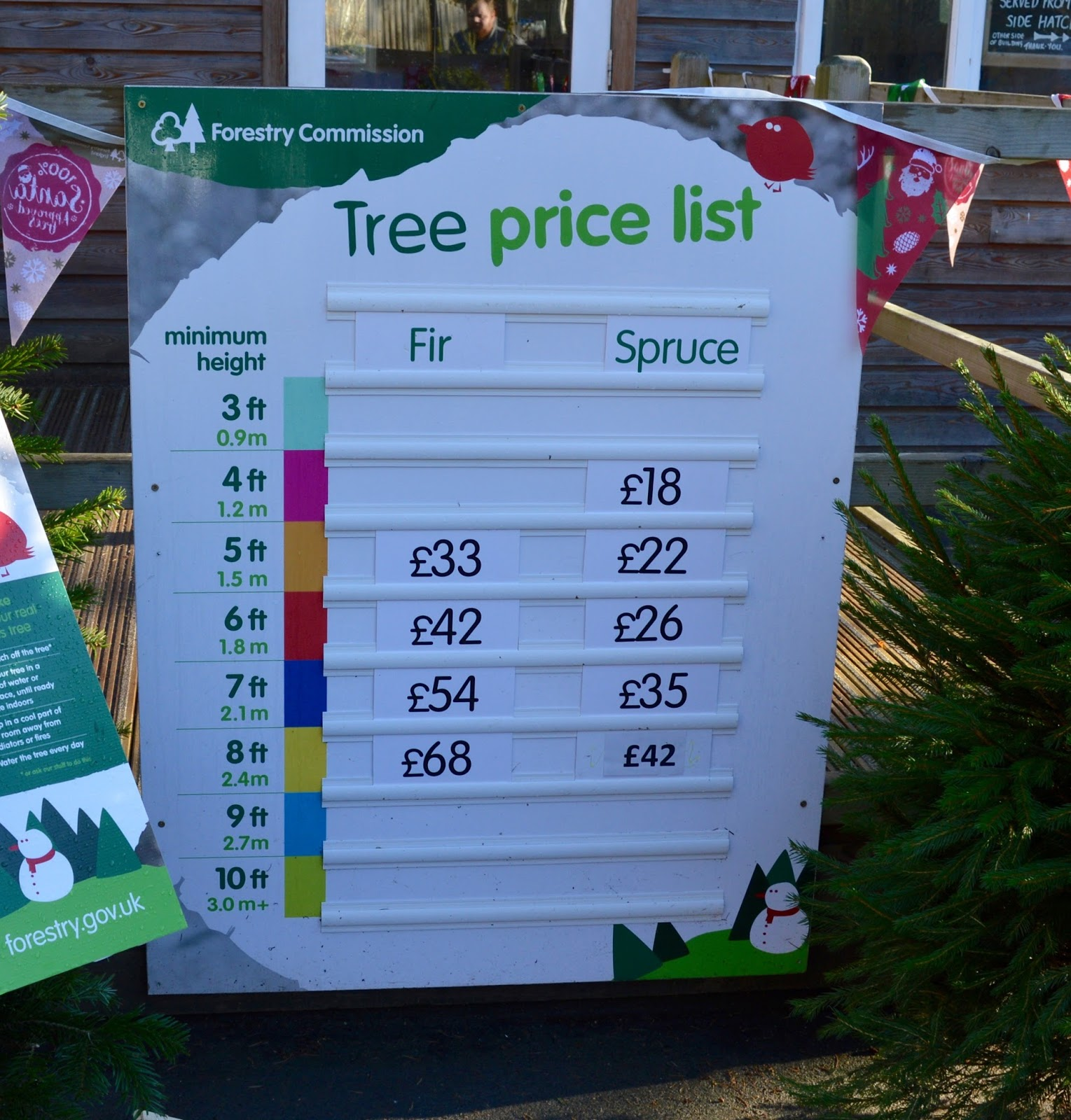 Why you should choose a real, sustainable Christmas tree from a Forestry Commission Forest (Hamsterley Forest in Durham and Kielder Forest in Northumberland) -  - tree prices