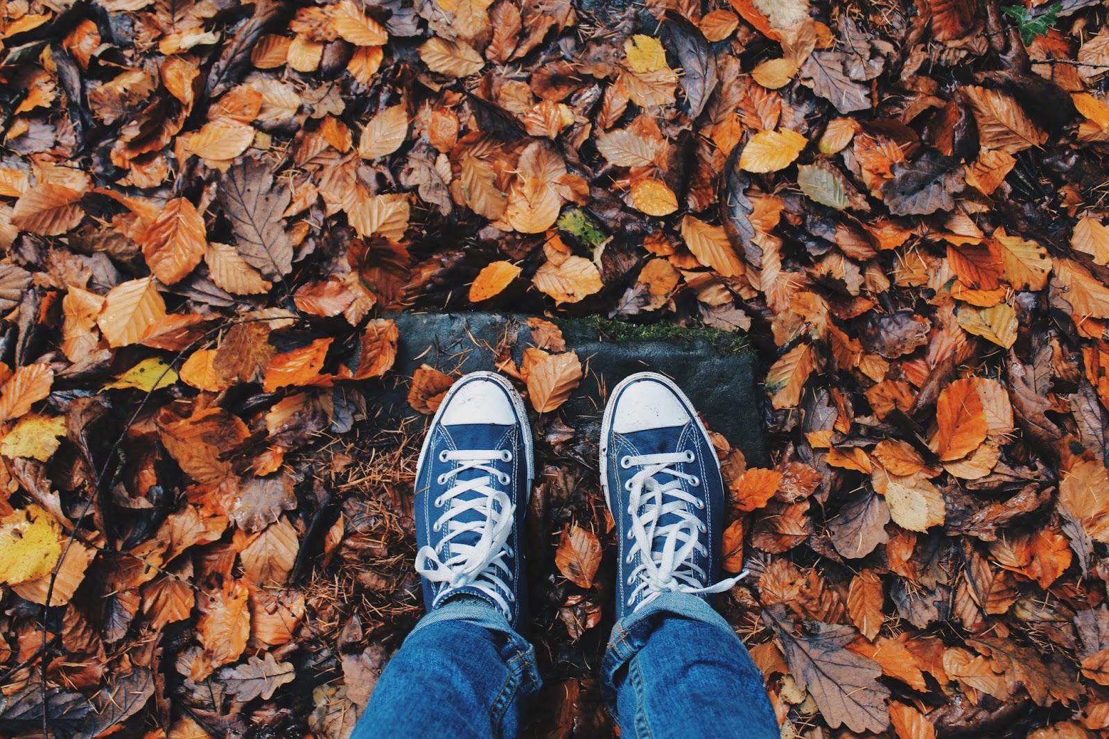 trampki na jesień | jak nie zmarnować jesieni