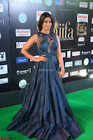 Shriya Saran in Beautiful Transparent Dark Gown IIFA Utsavam Awards 2017 021.JPG