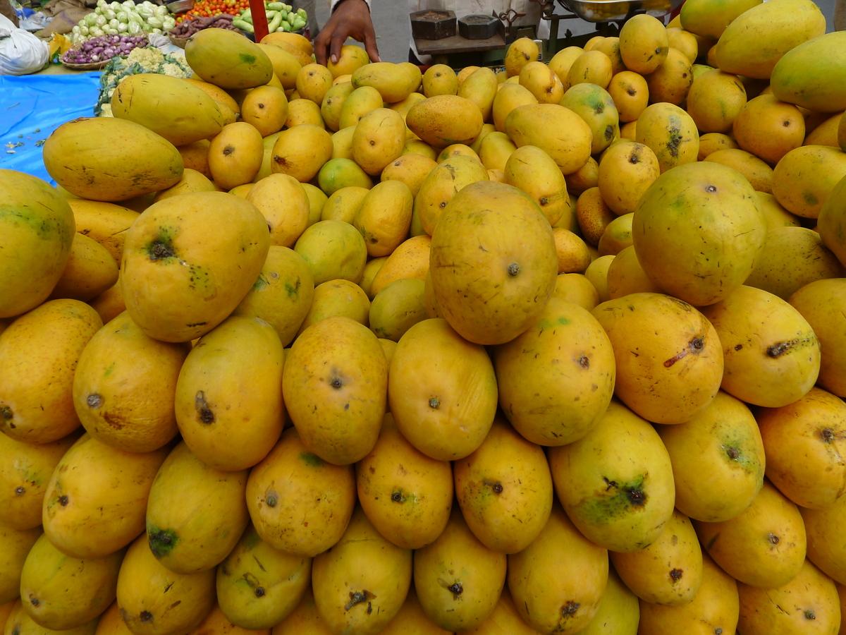 Pin Andhra Mania Hot Aunties Photos Baobab Fruit Wiki ...