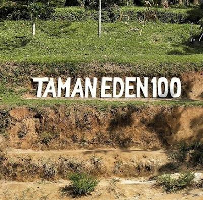 Mengeksplor Keindahan Alam Taman Eden 100 Tobasa