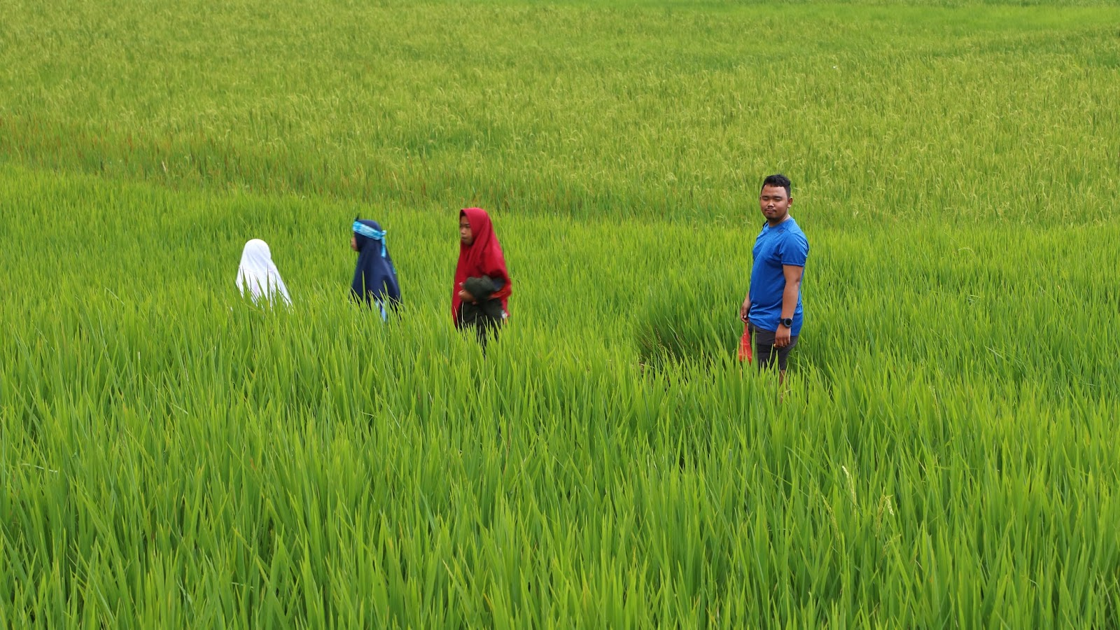 Bersantai Di Wana Wisata Curug Sawer Parakansalak Sukabumi