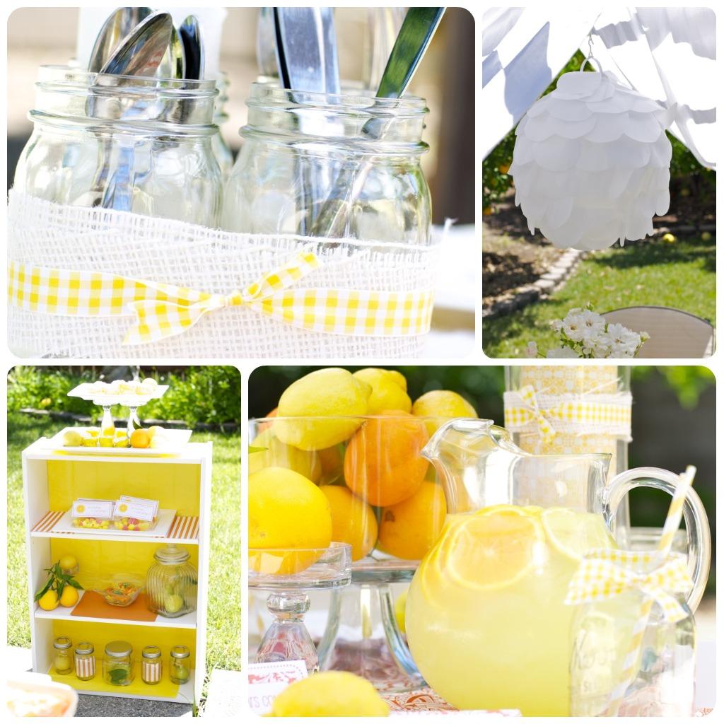 Lemon Party Video