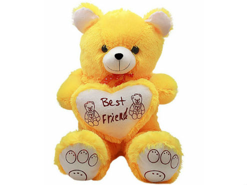 Best Friend Teddy Bear Pictures
