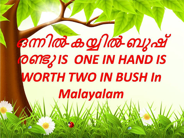 ONE-IN-HAND-IS-WORTH-TWO-IN-BUSH-In-Malayalam
